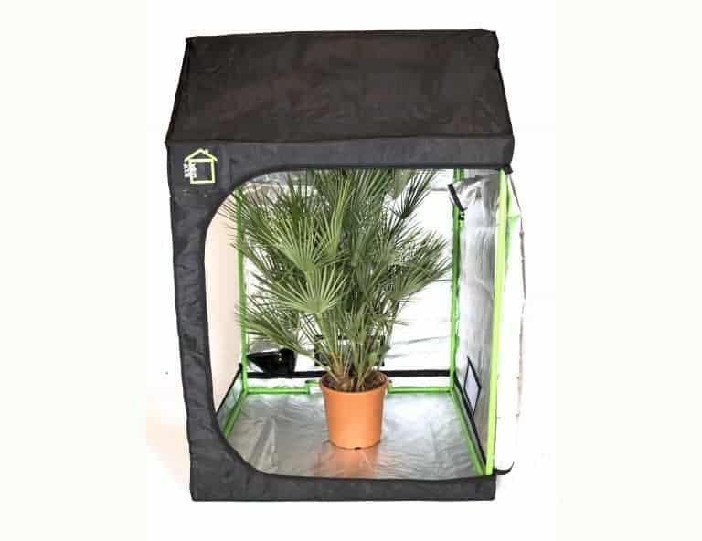 Attic Roof cube grow room green cube