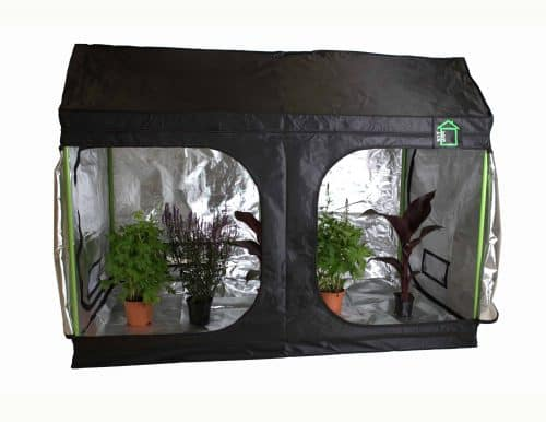 Roof Cube attic Grow room green cube