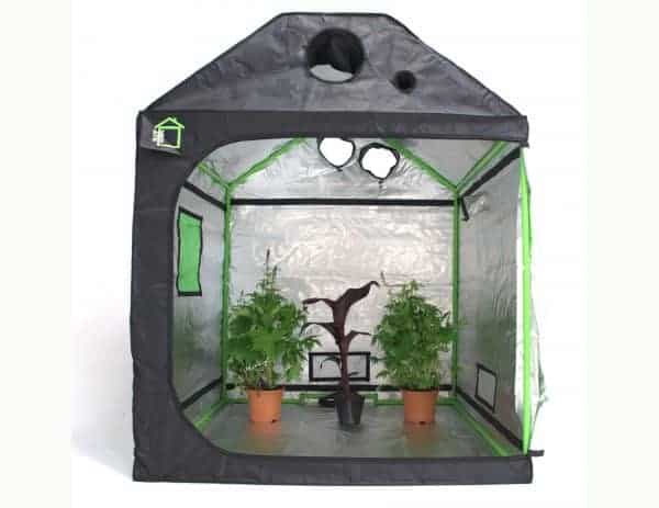 Attic Cube green cube grow room