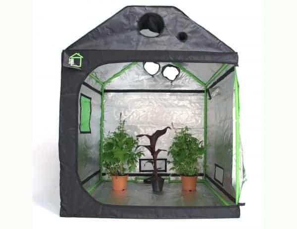 Attic Cube green cube grow room