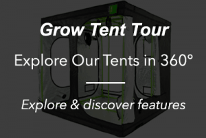 Grow tent best uk