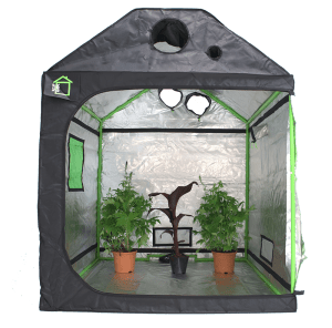 Best Grow tent for attics