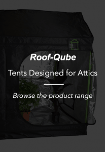 Grow Tent best grow Room