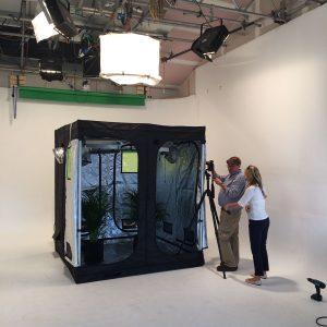 Green Qube grow room - Quick Qube 5
